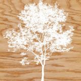 Snowy Tree Prints by Erin Clark
