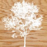 Snowy Tree Prints by Erin Clark
