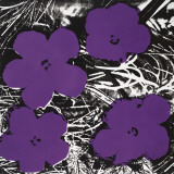 Flowers, c.1965 (4 purple) Posters by Andy Warhol