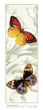 Butterfly Panel II Print by Susan Davies