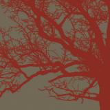 Cinnamon Tree III Poster by Erin Clark