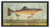 Speckled Trout Poster by Dominique Perotin