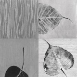 Leaf Quad Prints by Anna Becker