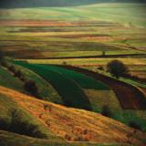Transylvania I Prints by Crina Prida