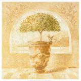 Oranger Prints by Pascal Cessou