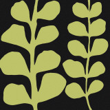 Green Fern on Black Posters by Denise Duplock