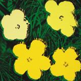 Flowers, c.1970 (4 yellow) Kunstdrucke von Andy Warhol