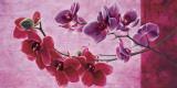 Composizione di Orchidee Prints by Sara J. Cortesse