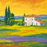 Toscana II Affiches par Andrea Villa