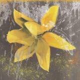 Tulip Fresco (yellow) Plakater av Erin Clark