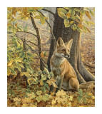 Eyes of Autumn Giclee Print by Kalon Baughan
