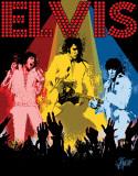 Petruccio - Elvis Vegas Tin Sign