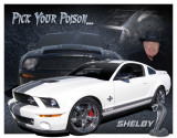 Shelby Mustang - You Pick Tin Sign