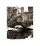Broer i Central Park IV, Central Park Bridges IV Giclée-tryk af Christopher Bliss