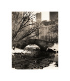 Central Park Bridges IV Lmina gicle por Christopher Bliss
