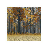 Autumn Wood Giclee Print by Arzt 