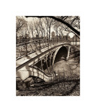 Central Park Bridges III Giclee Print by Christopher Bliss