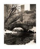Central Park Bridges IV Reproduction procédé giclée par Christopher Bliss