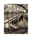 Central Park Bridges III Giclée-tryk af Christopher Bliss