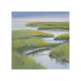 Winding Everglade Giclee Print by Don Almquist
