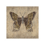 Leopard Butterfly Giclee Print by Jennifer Brice