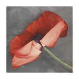 Rouge Giclée-tryk af Erin Clark