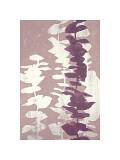 Eucalyptus, Roseberry Giclee Print by Denise Duplock