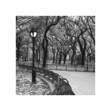 Walk Through the Park Giclee Print by Erin Clark