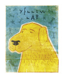 Lab (yellow) Lámina giclée por John Golden