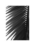 Palms, no. 7 Giclee Print by Jamie Kingham