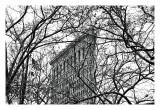 Veiled Flatiron Building Giclée-tryk af Erin Clark