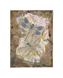 Honeycomb Dragonflies Giclee Print by David Hewitt