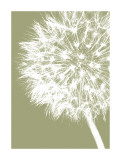 Dandelion Crop (khaki) Giclée-tryk af Jenny Kraft