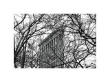Veiled Flatiron Building Giclee Print by Erin Clark
