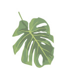 Philodendron II Reproduction proc&#233;d&#233; gicl&#233;e par Jenny Kraft