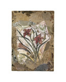 Tigerlily and Lace Giclee Print by David Hewitt