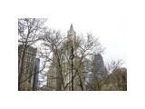 Woolworth Building from City Hall Park Giclee Print by Erin Clark