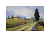Holiday in Tuscany Giclee Print by  Hawley
