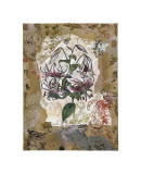 White Lily and Lace Giclee Print by David Hewitt