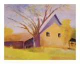 Old Cotton Barn, Beech Island, South Carolina Giclee Print by Wolf Kahn