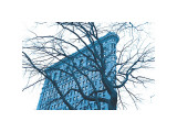 Blue Flatiron Giclee Print by Erin Clark