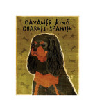 Cavalier King Charles (black and tan) Lmina gicle por John Golden