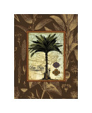 Date Palm Giclee Print by Karl Rattner