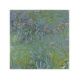 Jewelry Lilies Giclée-tryk af Claude Monet