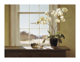 Orchids with Teapots Giclee Print by Zhen-Huan Lu