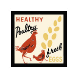 Healthy Poultry-Fresh Eggs Giclee Print