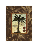 Banana Palm Giclee Print by Karl Rattner