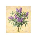 Lilac Season II Giclee Print by  Telander
