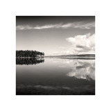 Big Pond Giclee Print by Andrew Ren
