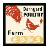 Aves de granja: huevos frescos Lámina giclée